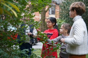 BEPS International School Discovering Nature