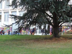 Lycee Français Jean Monnet - parc