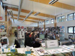 Lycee Français Jean Monnet - bibliothèque