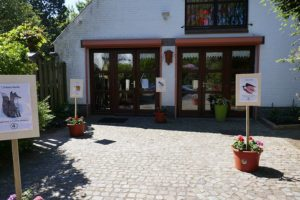 International Montessori School, Tervuren